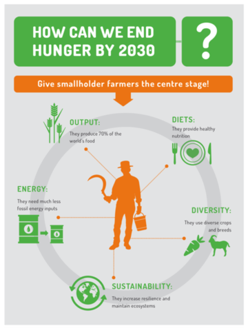 Infographic: How can we end hunger by 2030?