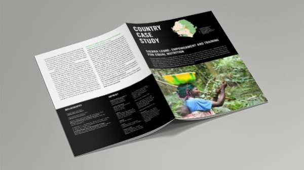 Cover: Country Case Study 2017 - Sierra Leone